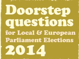 DFI Local and and European Election Campaign 2014