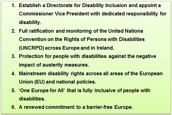 1. Establish a Directorate for Disability Inclusion and appoint a Commissioner Vice President with dedicated responsibility for disability.  2.  Full ratification and monitoring of the United Nations Convention on the Rights of Persons with Disabilities (UNCRPD) across Europe and in Ireland.  3.  Protection for people with disabilities against the negative impact of austerity measures.  4.  Mainstream disability rights across all areas of the European Union (EU) and national policies.  5.  'One Europe for All' that is fully inclusive of people with disabilities.  6. A renewed commitment to a barrier-free Europe
