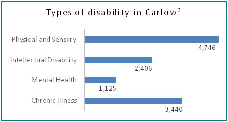 Types of disability in Carlow - all info in previous table