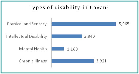 Types of disability in Cavan - all info in previous table