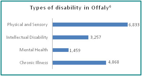 Types of disability in Offaly - all info in previous table