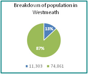 Breakdown of population in Westmeath - all info in previous table